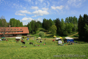 haanjamaa2012_gallery_add_060